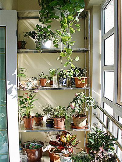 二居室室内阳台花园装修效果图