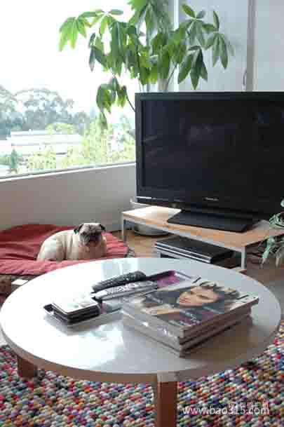 简单且舒适的小客厅装修效果图
