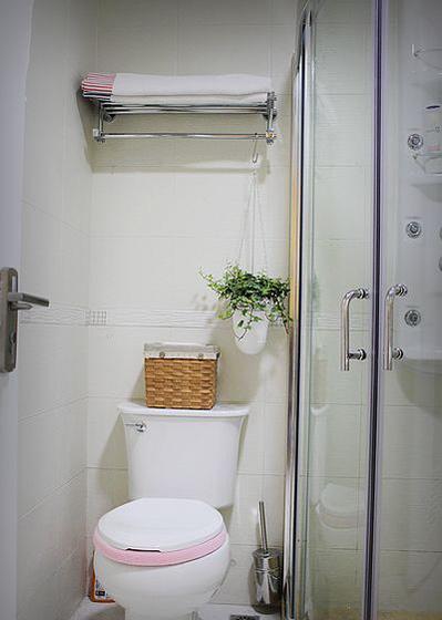卫生间,挂了吊兰显得清新许多。