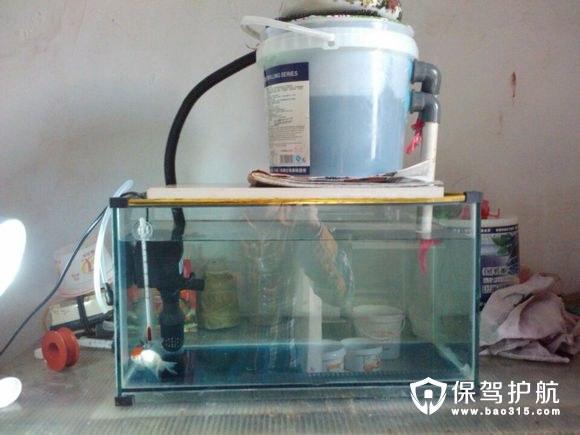鱼缸过滤器哪种好