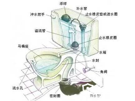 虹吸式马桶回气孔图示