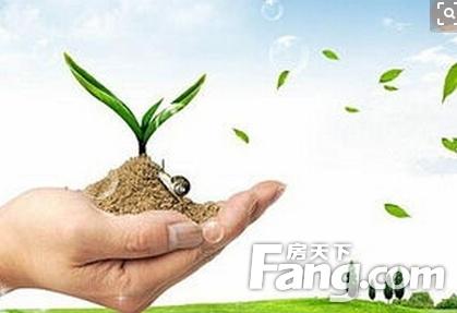 除甲醛有效方法?去除甲醛的植物?