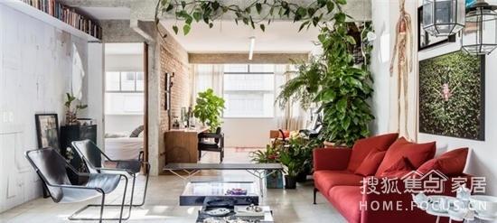 这个绿意融融的家  竟是110平旧房改造的!