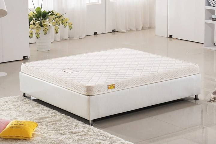 棕榈床垫有哪些优点,棕榈床垫如何选购?