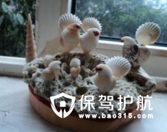 贝壳工艺品赏析