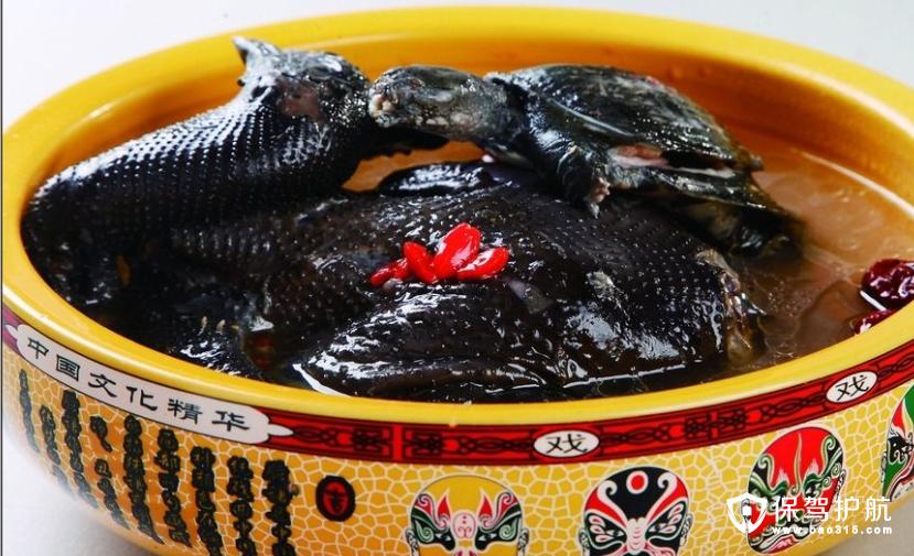 甲鱼炖乌鸡大补汤