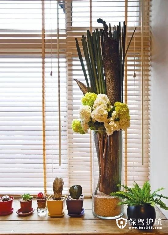 北欧风格客厅百叶窗搭配小绿植