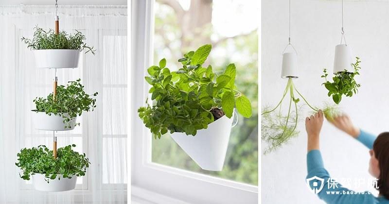 小户型绿化 壁挂式创意盆栽装饰