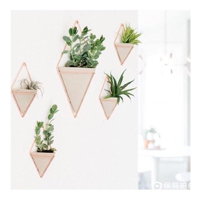 一款出镜率极高的网红花架 墙面置物架轻松收纳赶快拔草吧!