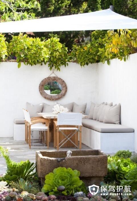 阳台植物盆栽