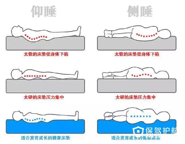 【干货】睡眠质量的关键——床垫的选择!