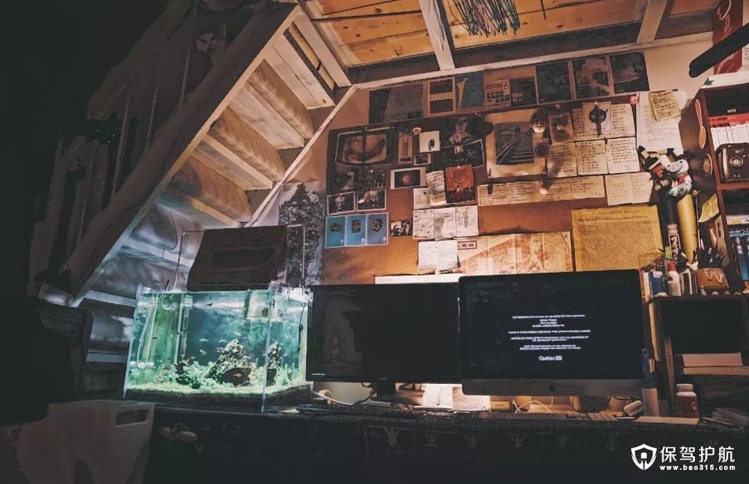 如何净化鱼缸水质,清洗鱼缸?