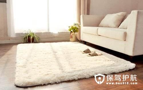 地毯的清洁技巧与方法
