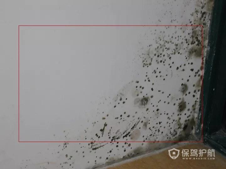 卫生间墙面渗水 卫生间墙面渗水怎么处理?