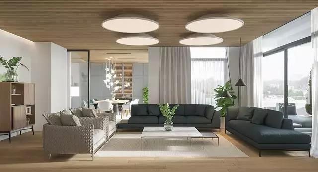 设计师实案,现代豪华公寓,满屋自然元素,还带有一个空中花园!