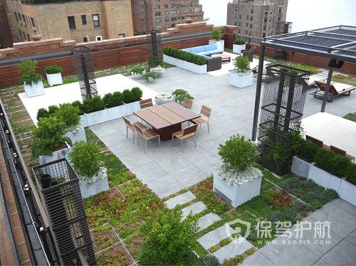 适合高层楼顶种植的小型树有哪些?-风水