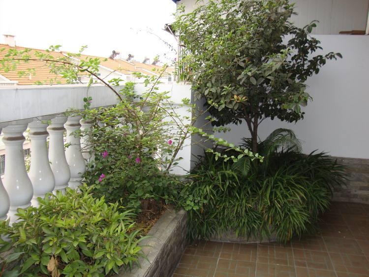 露台种什么树风水好呢?阳台绿化怎么设计?