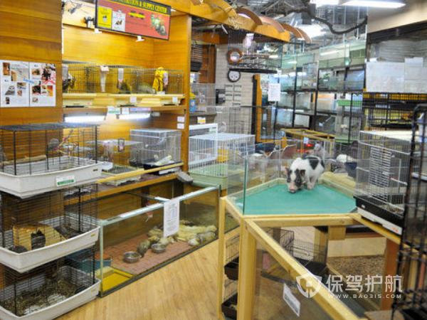 日式宠物店装修效果图-保驾护航