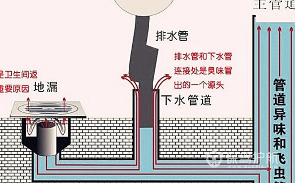 防臭地漏的原理与图解,防臭地漏如何安装?