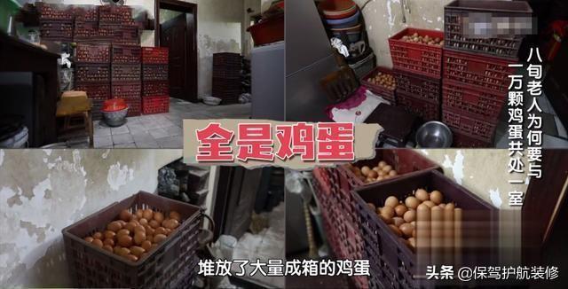 阿婆五香蛋火爆的背后:室内空气重污染、和1万多颗鸡蛋一起睡...