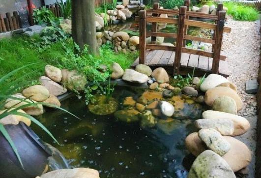 自建房有个大院子,自己动手做个鱼池,庭院装修非常好看