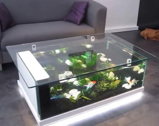 在桌子里養魚?這招太有創意了吧!