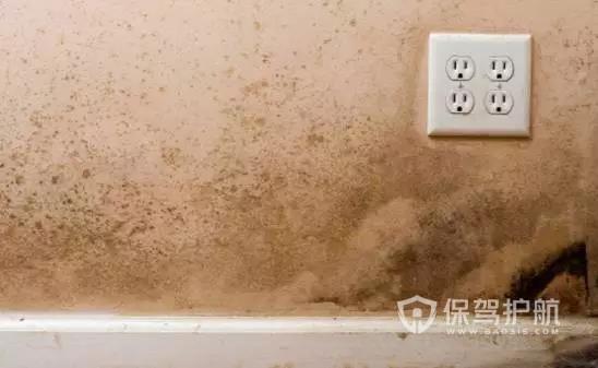 家里墙面如何防潮,墙面潮湿的原因