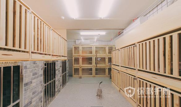 简约现代风格宠物店寄养区装修效果图…