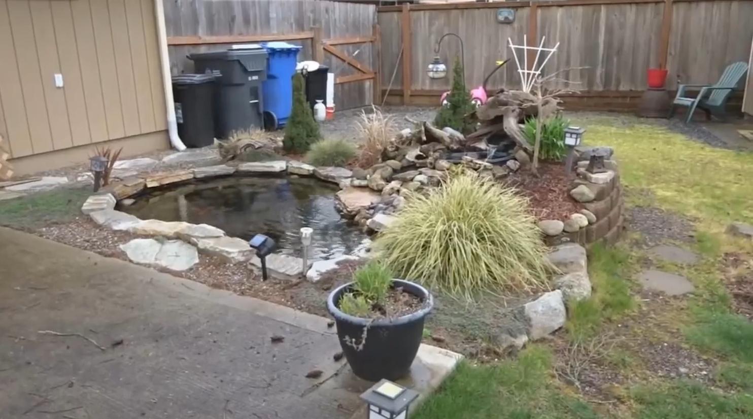 自己动手,打造精美的景观小水池