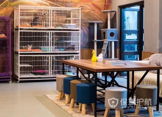 50平米宠物店如何装修?小型宠物店装修风格选择
