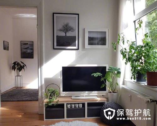 阳光温馨田园风格一居室装修效果图